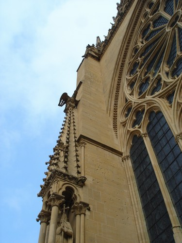 Metz Cathedral : 005
